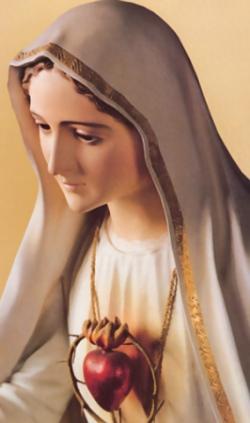 La Devoción al Inmaculado Corazón de María
